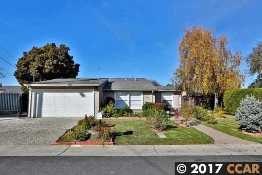 1911 Mayette Ave, Concord, CA 94520 (#40805547) :: The Lucas Group