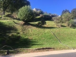8436 Wildcat Dr, El Cerrito, CA 94530 (#40809850) :: Estates by Wendy Team