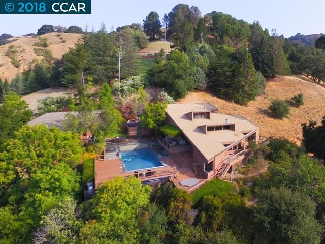 16 Deer Trail, Lafayette, CA 94549 (#40812615) :: Armario Venema Homes Real Estate Team