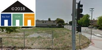 San Lorenzo, CA 94580 :: Armario Venema Homes Real Estate Team