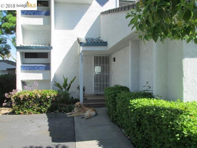 5831 Yawl St, Discovery Bay, CA 94505 (#40818802) :: RE/MAX TRIBUTE