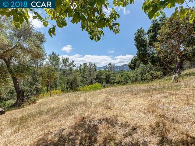42 Los Altos Road, Orinda, CA 94563 (#40825356) :: Armario Venema Homes Real Estate Team