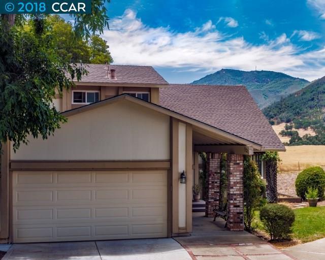 523 Mt Dell Drive, Clayton, CA 94517 (#40830028) :: Estates by Wendy Team
