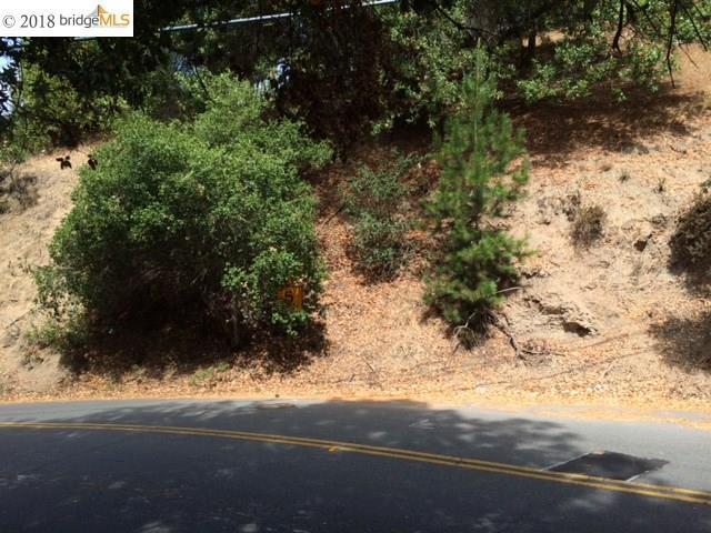 7889 Shepherd Canyon, Oakland, CA 94611 (#40839874) :: Estates by Wendy Team