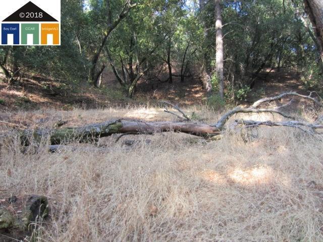 00 Morgan Territory Rd, Clayton, CA 94517 (#40841196) :: The Grubb Company