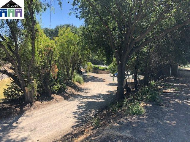 13991 River Rd, Walnut Grove, CA 95690 (#40877220) :: Realty World Property Network
