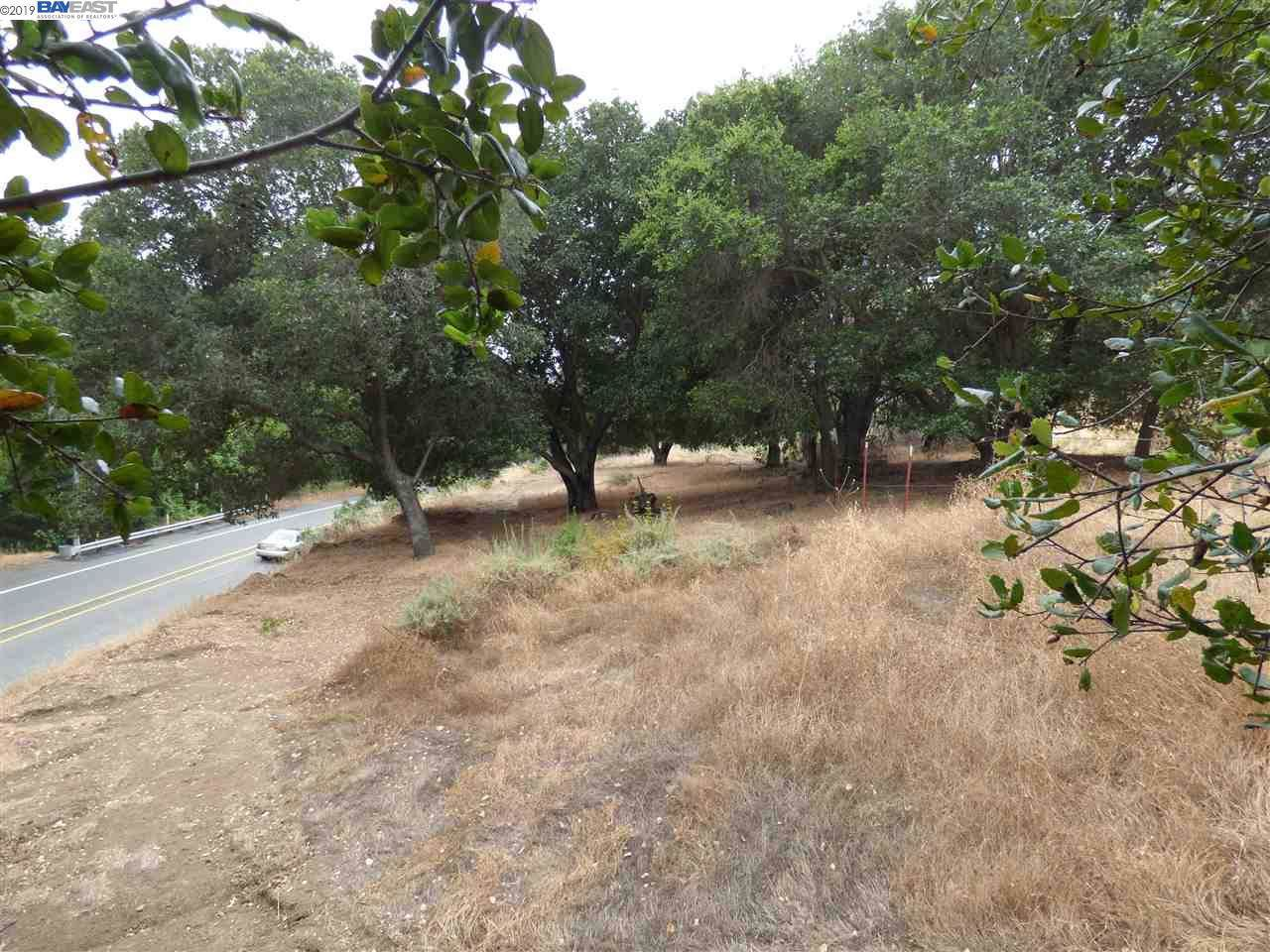 1298 Niles Canyon Rd - Photo 1