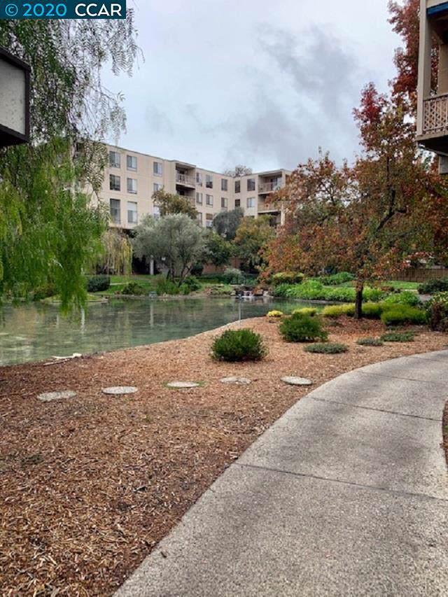 490 N Civic Dr #204, Walnut Creek, CA 94596 (#40891644) :: Armario Venema Homes Real Estate Team