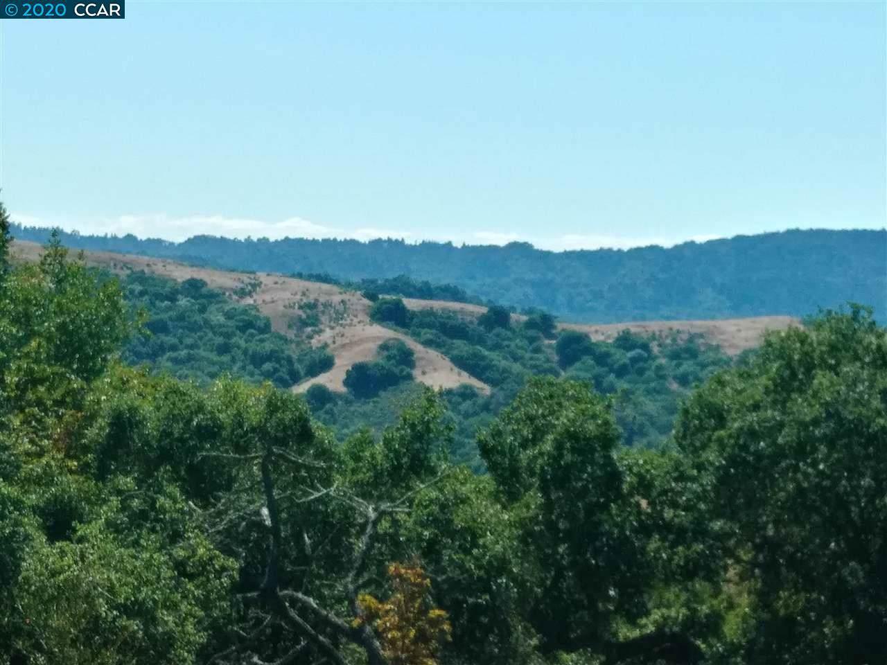 1233 Bollinger Canyon - Photo 1