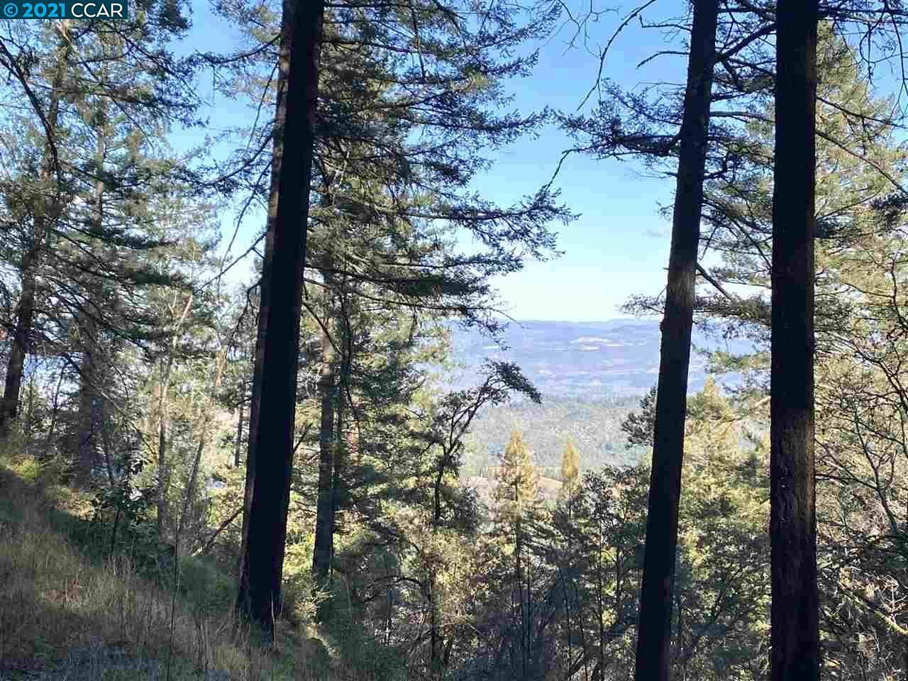 3633 Mount Veeder Rd - Photo 1