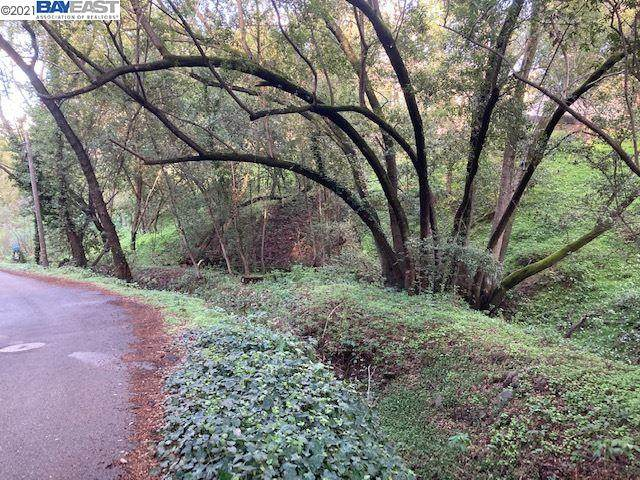 16231 Wood Acres Rd - Photo 1
