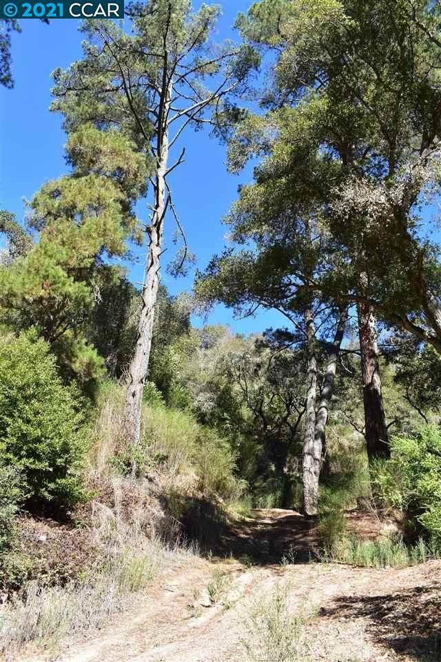 Canyon, CA 94516 :: MPT Property