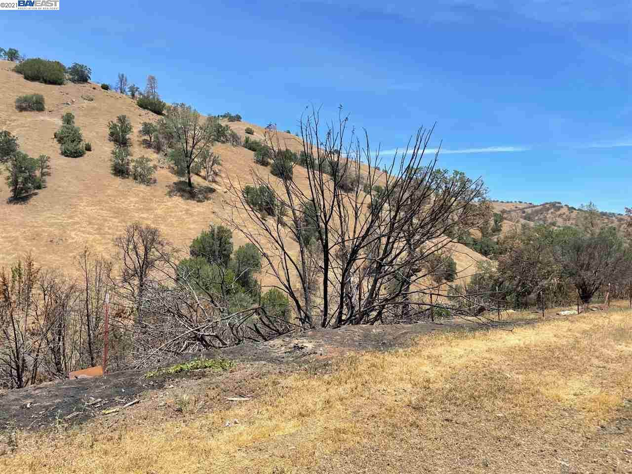 17770 Corral Hollow Rd - Photo 1
