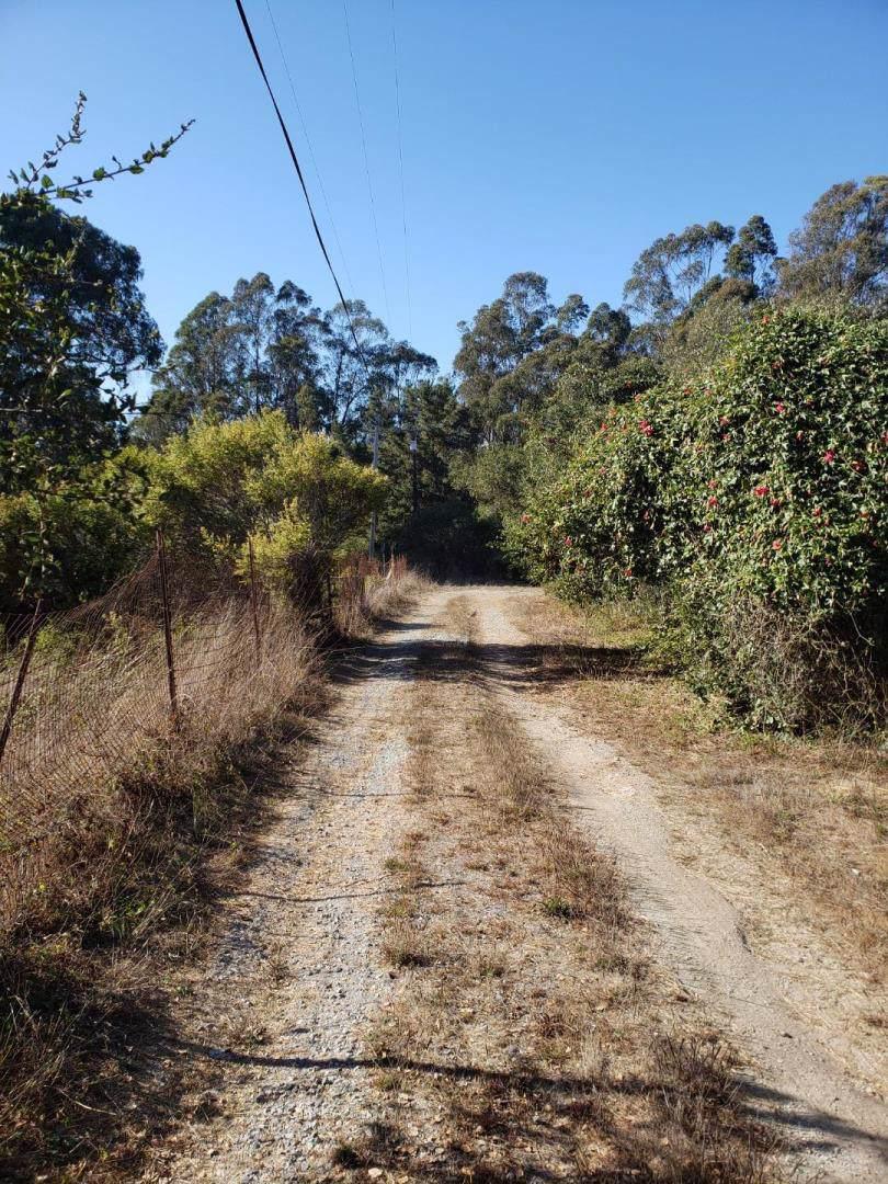 0 Hawk Haven Road - Photo 1