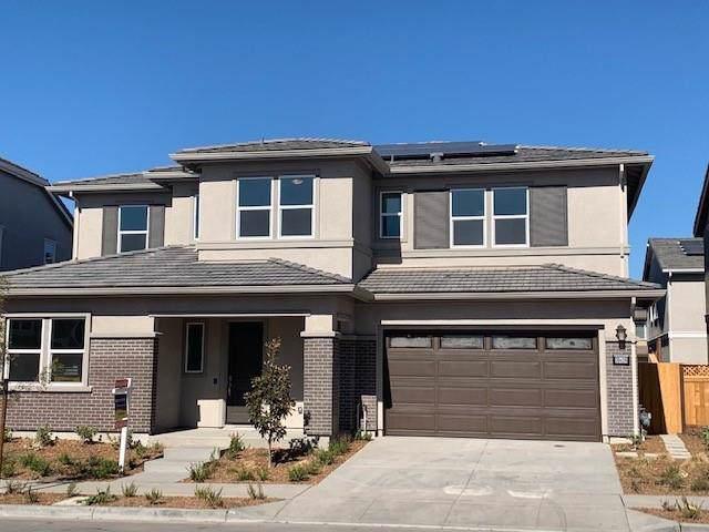 39428 Dragonfly, Newark, CA 94560 (#ML81773207) :: Realty World Property Network