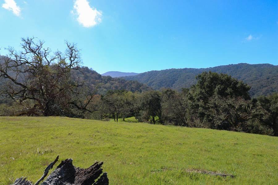27 Arroyo Sequoia - Photo 1