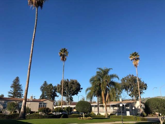 436 Giannotta #436, San Jose, CA 95133 (#ML81799564) :: The Lucas Group