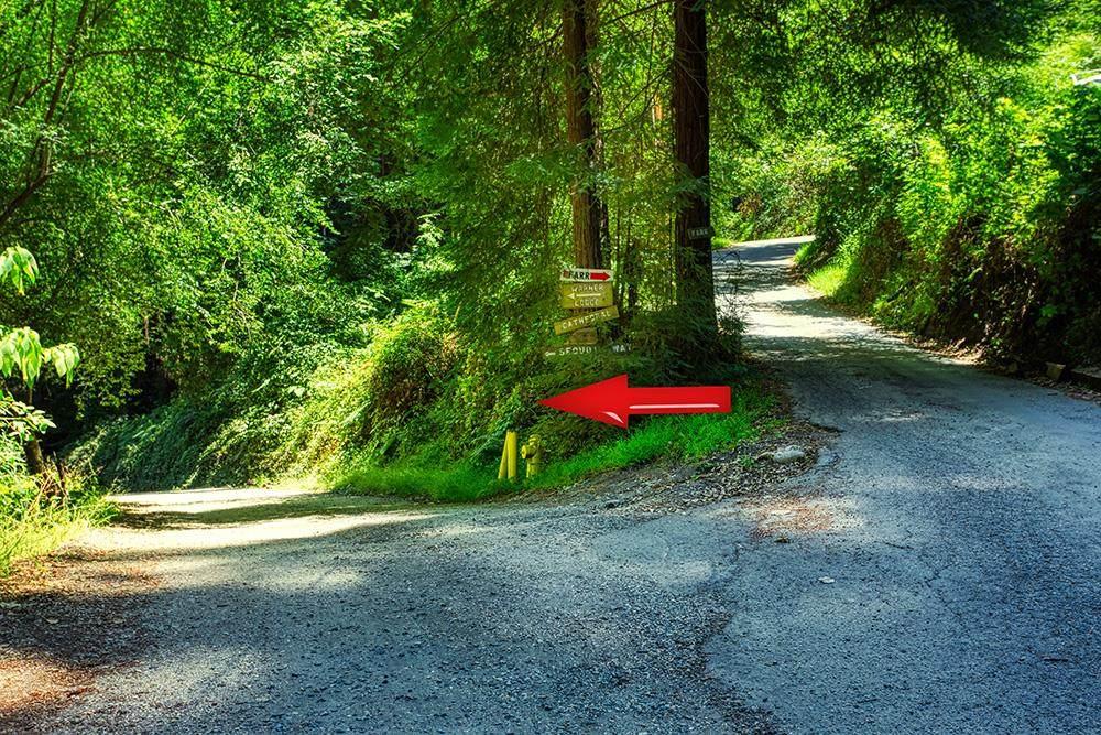 02 Sequoia - Photo 1