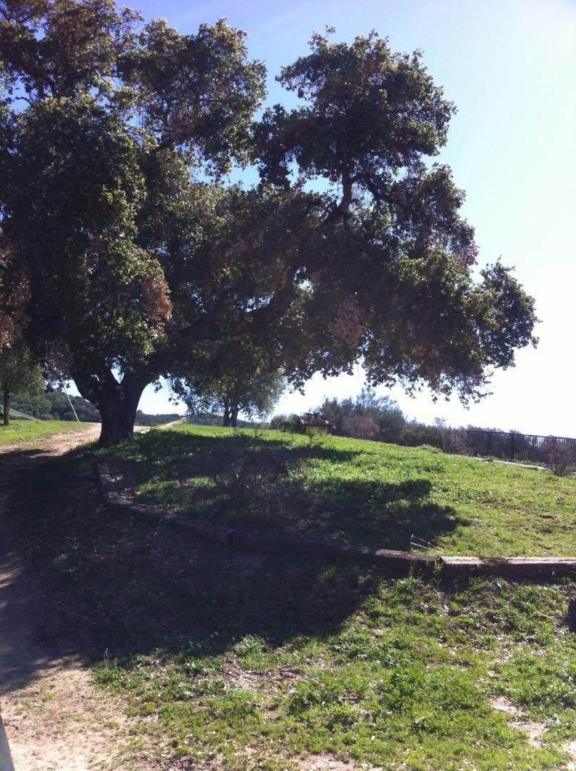 5 Asoleado Drive - Photo 1