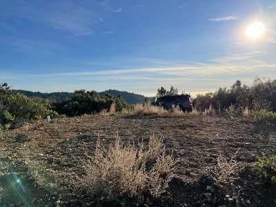 28000 Loma Prieta Way - Photo 1