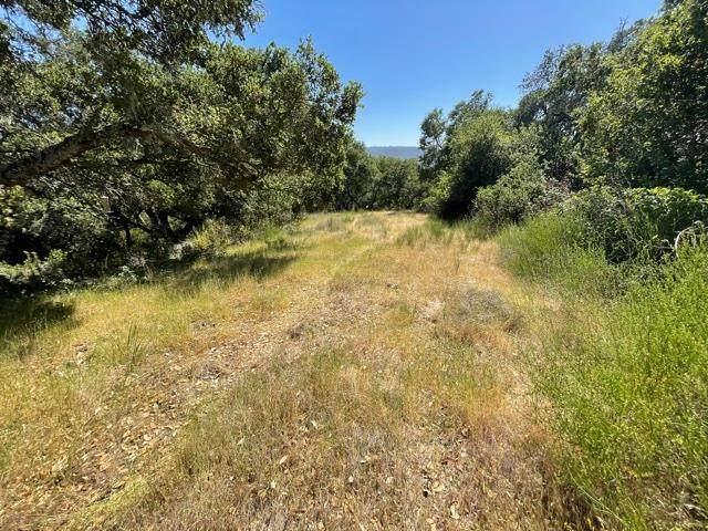 0 Poli Road, Morgan Hill, CA 95037 (#ML81844203) :: Blue Line Property Group
