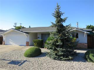 808 Sevely Drive, Mountain View, CA 94041 (#ML81725104) :: Estates by Wendy Team