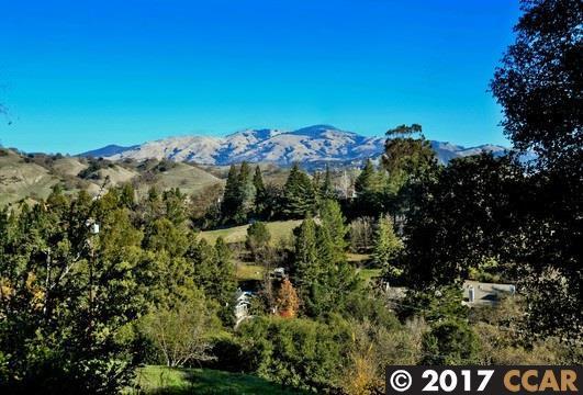 141 Dean Rd, Alamo, CA 94507 (#40805423) :: Realty World Property Network
