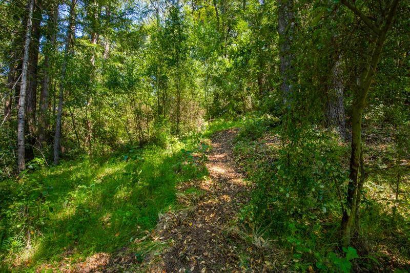Lot 61 Quigg Way - Photo 1