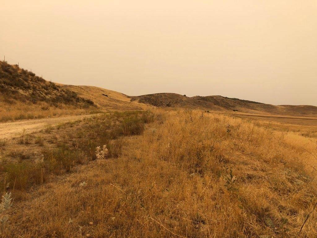 227 Dorrington Trail - Photo 1