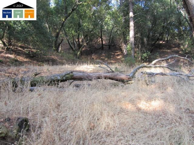00 Morgan Territory Rd, Clayton, CA 94517 (#40798440) :: Estates by Wendy Team