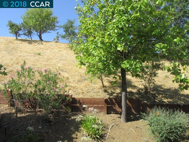 483 Camelback Rd, Pleasant Hill, CA 94523 (#40830247) :: Estates by Wendy Team
