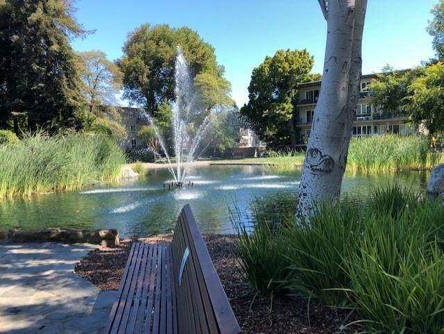 902 Peninsula Avenue #217, San Mateo, CA 94401 (#ML81852596) :: The Grubb Company