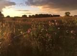 1401 Windermere Way - Photo 52