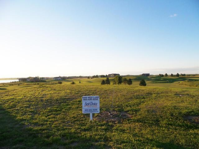 Northbay Addition Lot 104, Arlington, SD 57212 (MLS #19-160) :: Best Choice Real Estate