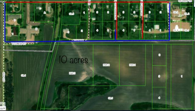 Bryant Lot 3 Bk 3, Bryant, SD 57221 (MLS #19-161) :: Best Choice Real Estate