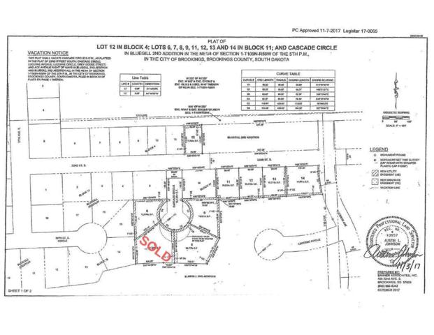 Address Not Published, Brookings, SD 57006 (MLS #19-53) :: Best Choice Real Estate