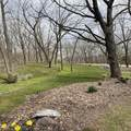 17945 Twin Springs Road - Photo 7
