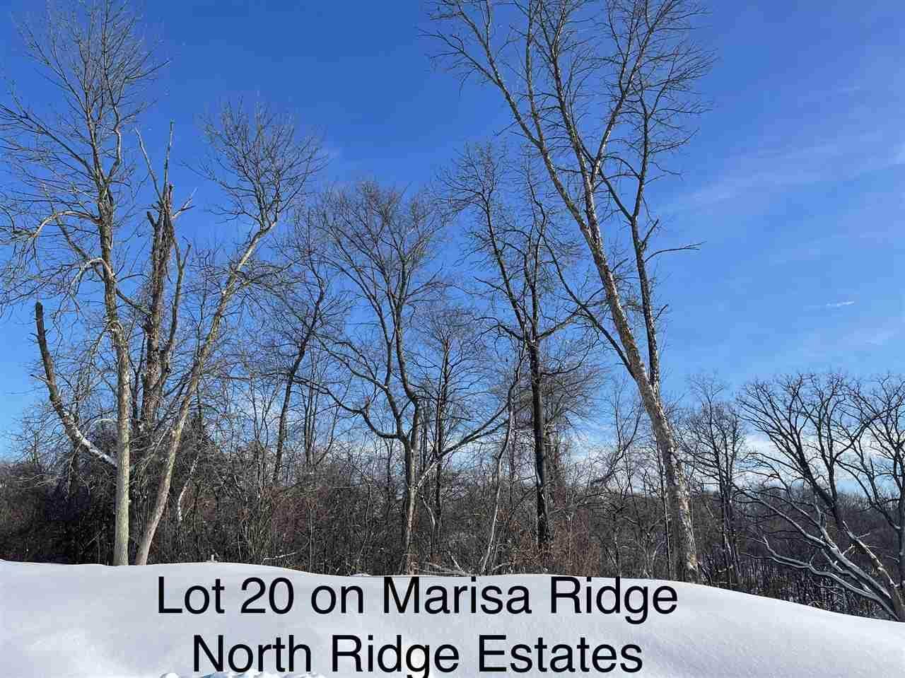 Lot 20 Marisa Ridge - Photo 1