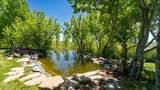 3628 Adobe Ranchos Drive - Photo 42