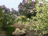 1830 Canyon Drive - Photo 32
