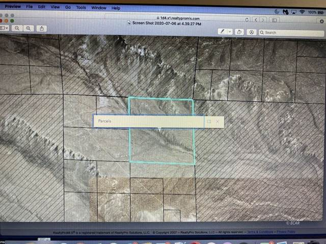 160 AC N Osino Hills, Elko, NV 89801 (MLS #3614599) :: Shipp Group