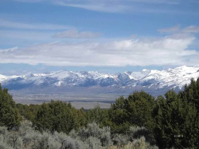 TBD Hamilton Stage Road, Spring Creek, NV 89815 (MLS #3618467) :: Shipp Group