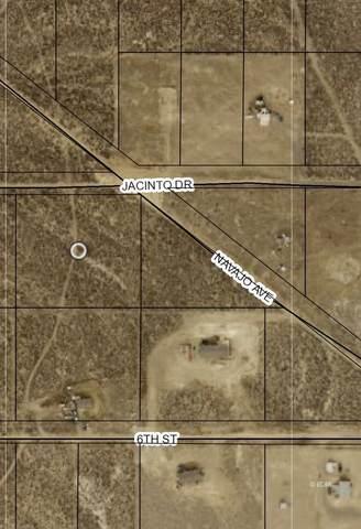 TBD Jacinto Drive, Ryndon, NV 89801 (MLS #3619360) :: Shipp Group