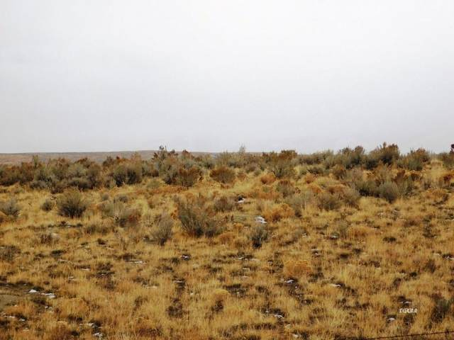 TBD S33 T37n  R57e, Ryndon, NV 89801 (MLS #3619375) :: Shipp Group