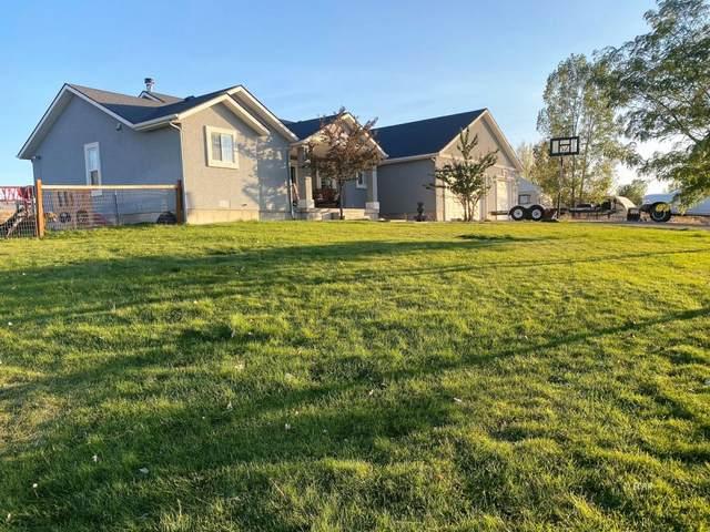 961 Wolf Creek Circle, Spring Creek, NV 89815 (MLS #3619442) :: Shipp Group
