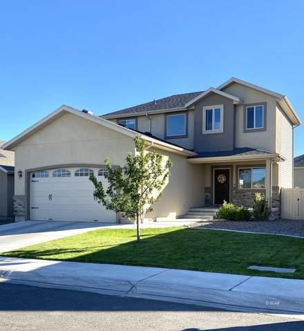 3677 Boulder Creek, Elko, NV 89801 (MLS #3619500) :: Shipp Group