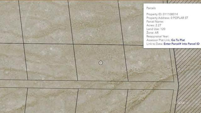 Poplar Secton 5 Street, Montello, NV 89830 (MLS #3619783) :: Shipp Group