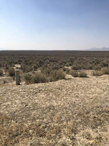 006-56N-006 NE, Ryndon, NV 89801 (MLS #3619851) :: Shipp Group