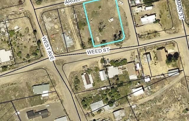Weed Street, Tuscarora, NV 89834 (MLS #3619957) :: Shipp Group
