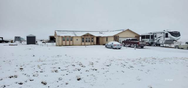 725 Diamondback Drive, Spring Creek, NV 89815 (MLS #3620015) :: Shipp Group
